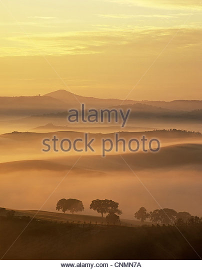 Rural landscape cloaked in fog - Stock Image