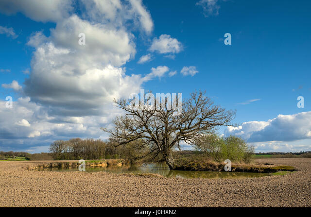 Natural spring-fed pond in farmland - France. - Stock Image