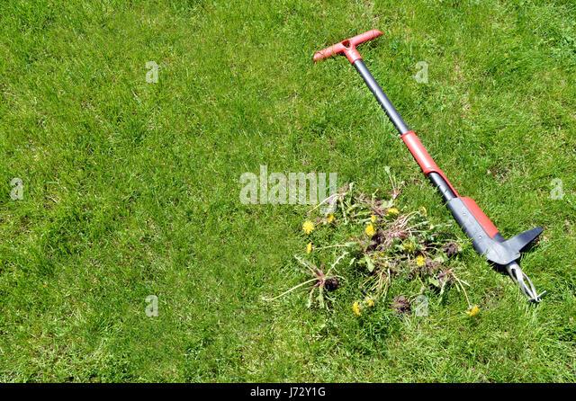 Garden isolated summer tools stock photos garden for Garden tool maintenance