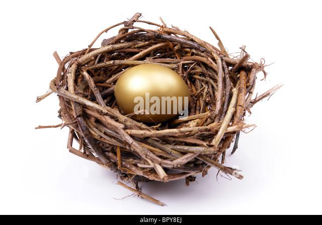 Golden egg in bird's nest over white background - Stock Image