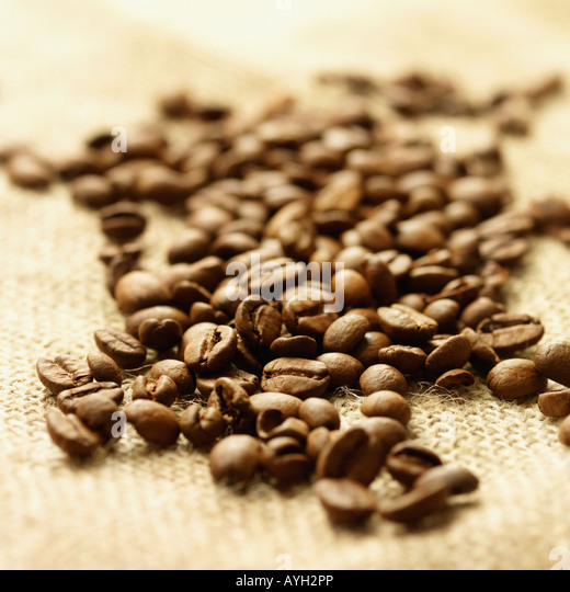 Close up of coffee beans - Stock Image