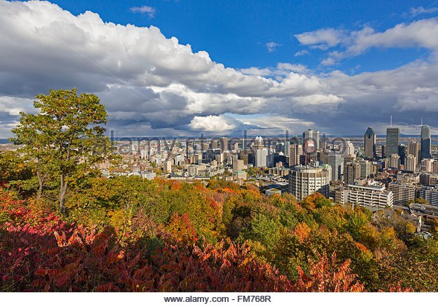Canada Quebec province Montreal downtown and its skyscrapers from the Kondiaronk lookout at the summit of the Mount - Stock Image