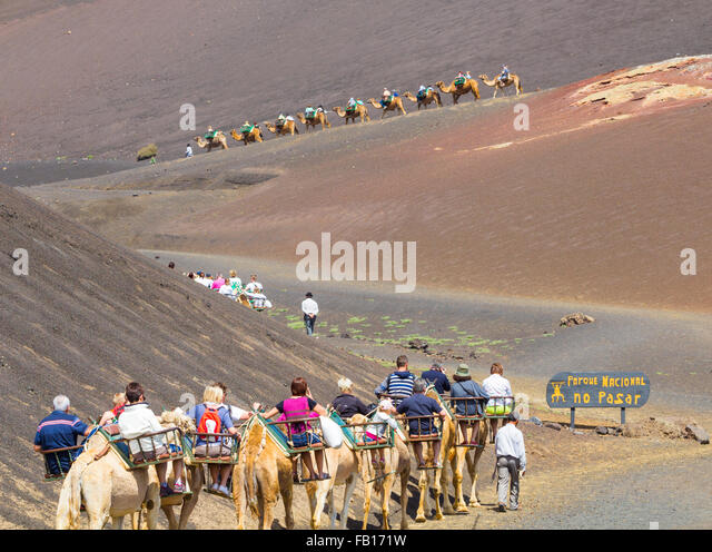 Tourists riding Camels in Timanfaya National Park, Lanzarote, Canary Islands, Spain. - Stock-Bilder