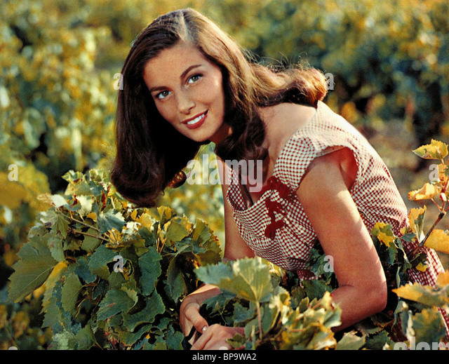 PIER ANGELI THE VINTAGE (1957) - Stock Image