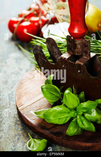 vintage herb cutting mezzaluna knife and fresh ingredients. Health, vegetarian food or cooking concept - Stock Image