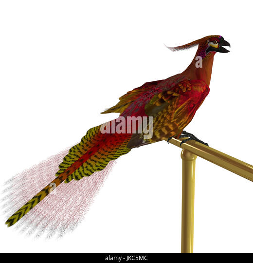 The Phoenix is a bird in Greek mythology that is long-lived and is reborn or regenerated over and over again. - Stock Image