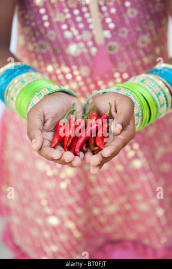 Indian girl holding red chilli peppers in cupped hands - Stock-Bilder