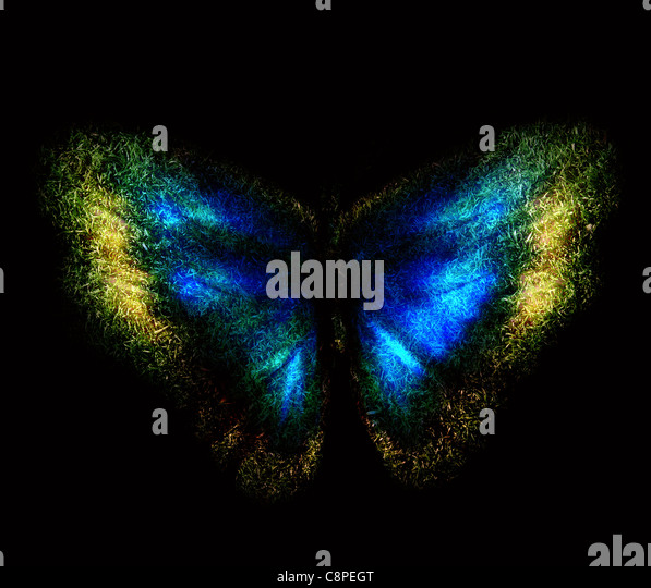 Blue abstract butterfly on a black background - Stock Image