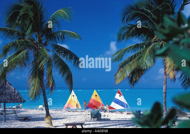 Bahamas Abaco beach sailboats palm trees - Stock Image