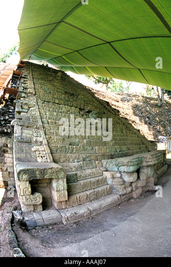 Honduras Copan Ruinas Hieroglyphic Stairway temple under canopy and the longest Maya text in the world - Stock Image
