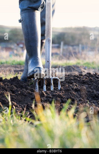 A person gardening, digging earth with a fork - Stock-Bilder