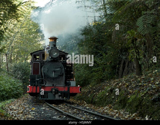 Puffing Billy train ride through the Dandenong Ranges near Melbourne, Australia - historic train trip - Stock Image