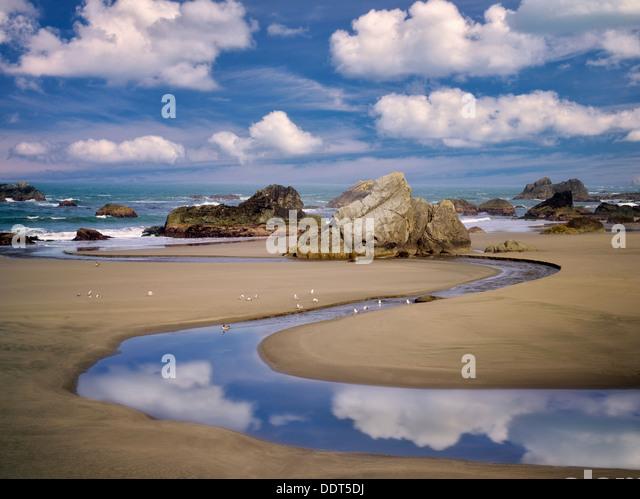 Harris Creek and ocean with seagulls. Harris Beach State Park, Oregon - Stock Image