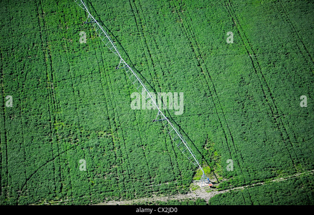URUGUAY Bella Unión Monsanto GMO soya bean field with irrigation system, soya beans are exported to EU and - Stock Image