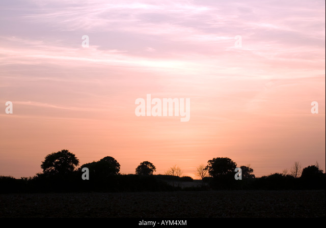 Doug Blane Pink purple orange and red sky as the sun sets over a horizon silhouetted trees - Stock Image