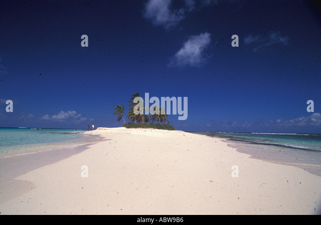 Classic Tropical Island with palm trees sand and deep blue sky - Stock Image