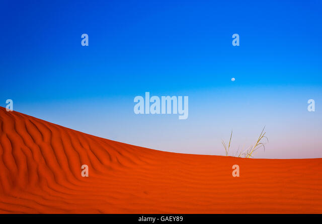 Detail of a red dune in Namibia, Africa - Stock-Bilder
