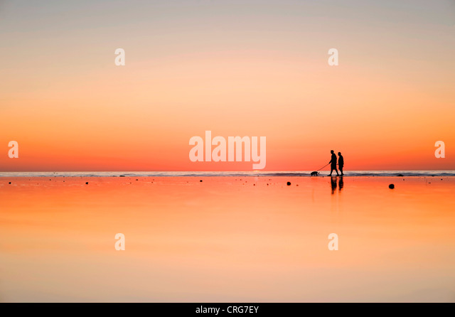 Silhouetted figures walk their dog on wet sand beside the ocean at sunset. - Stock-Bilder