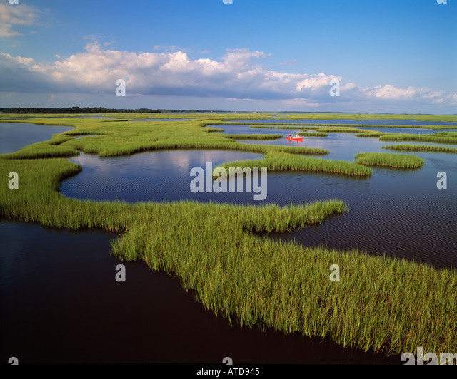 People Canoeing in the marsh area near Bear Island North Carolina - Stock Image