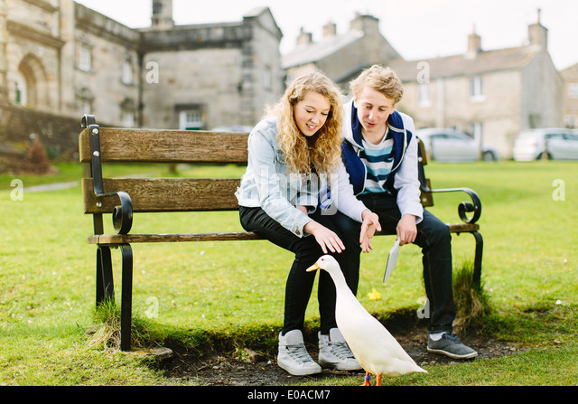 Teenage brother and sister watching duck from bench - Stock Image