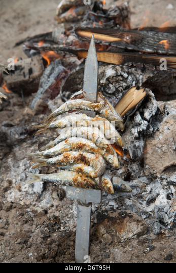 how to cook fish on an open fire
