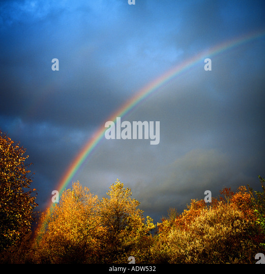 RAINBOW WITH AUTUMNAL TREE FOLIAGE AND STORMY SKY - Stock Image