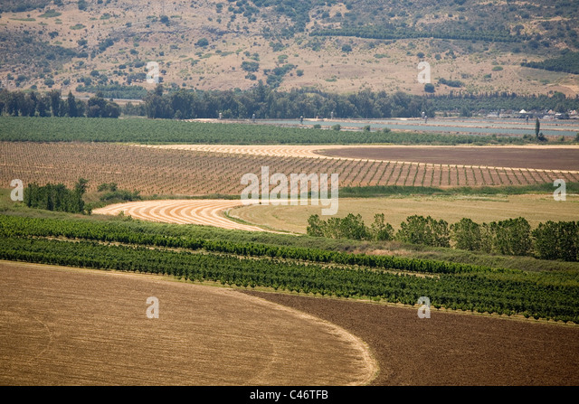 Aerial photograph of brown and green fields in the Upper Galilee - Stock Image