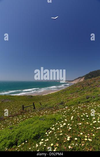 Hang glider Soars Over the California Coast, Ano Nuevo Bay, California - Stock Image
