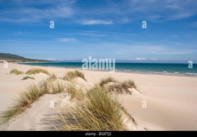 Bolonia beach, Costa de la Luz, Andalucia, Spain, Europe - Stock Image