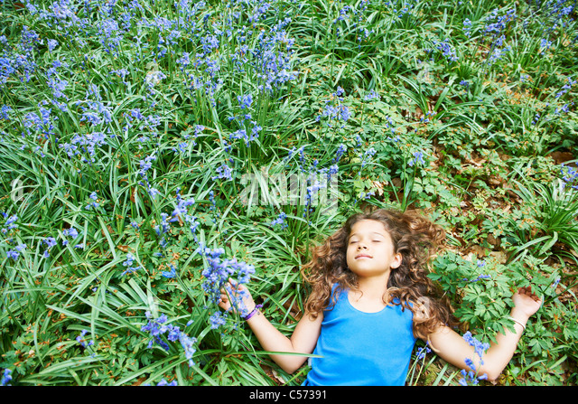 Field Of Flowers Stock Photos & Field Of Flowers Stock ...