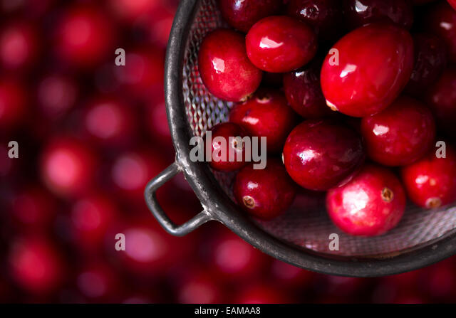Macro shot of cranberries in a vintage, metal strainer with more cranberries in background. - Stock Image