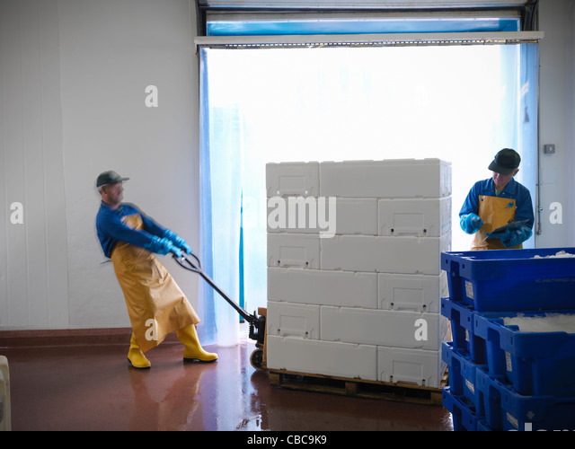 Workers carting pallets in warehouse - Stock Image