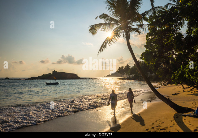 Mirissa Beach, couple taking a romantic walk under a palm tree at sunset, South Coast, Sri Lanka, Asia - Stock-Bilder