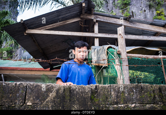 scene from everyday life, Philippines - Stock-Bilder