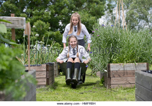 Middle schoolgirls having fun with wheelbarrow gardening in vegetable garden - Stock-Bilder