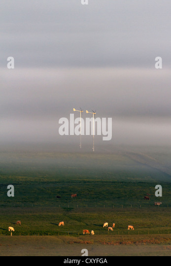 Wind turbines in mist - Stock Image