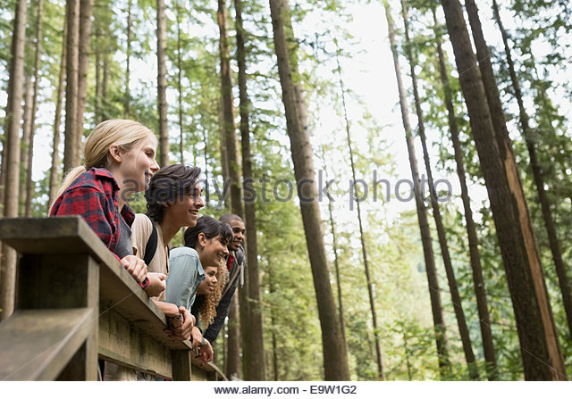 Friends in a row on footbridge in woods - Stock Image