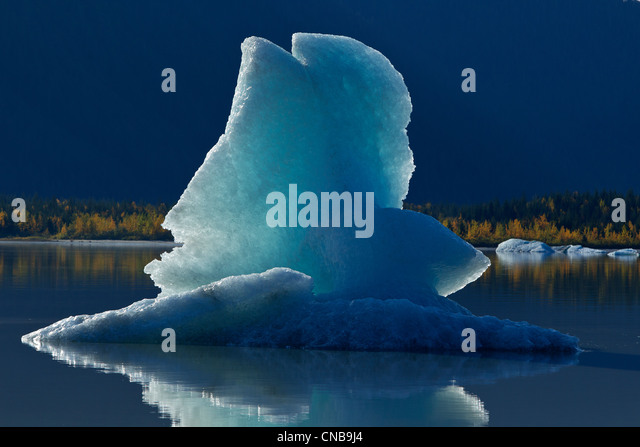 Icebergs float on the calm surface of Mendenhall Lake, Mendenhall Glacier, Juneau, Southeast Alaska, Autumn - Stock Image