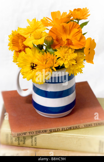 Mixed orange and yellow cut flowers in a traditonal cornish blue vase - Stock Image
