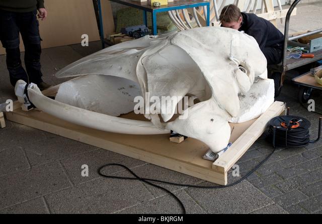 skilled craftsman stock photos skilled craftsman stock images alamy. Black Bedroom Furniture Sets. Home Design Ideas