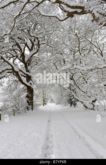 Heavy snowfall in an English country lane - Stock Image
