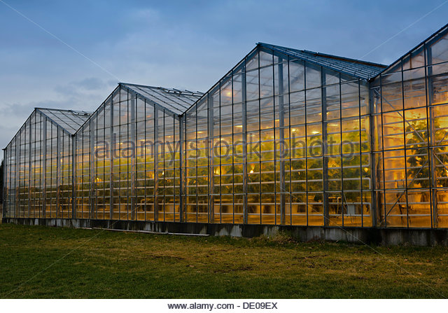 Greenhouses, heated with geothermal energy - Stock Image