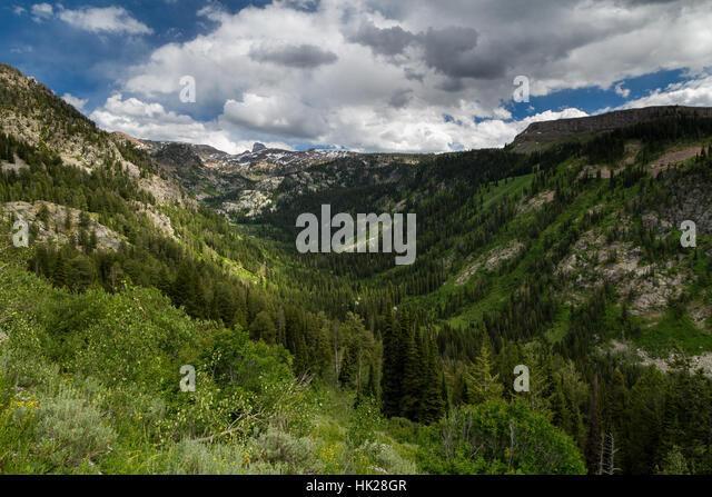 South Leigh Canyon rising to higher elevations in the Teton Mountains. Jedediah Smith Wilderness, Wyoming - Stock Image