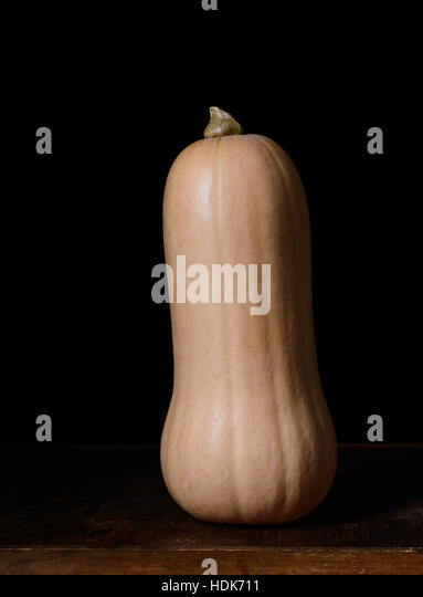 Butternut squash against a black background - Stock Image