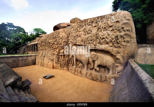 Statues arjuna anjuna penance ; Mamallapuram Mahabalipuram ; Chengalpattu ; Tamil Nadu ; India - Stock Image