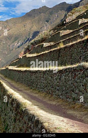 Agricultural terraces, Pisac Inca ruins, Pisac, Cusco, Peru - Stock Image