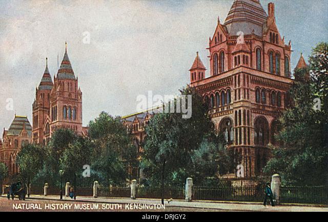 Natural History Museum, South Kensington, London - Stock Image