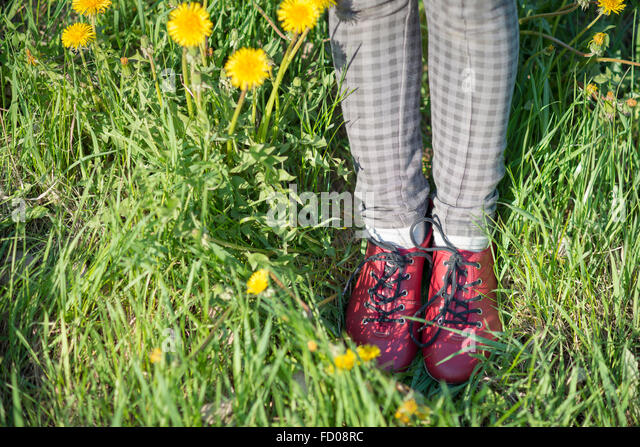 legs in red shoes in green grass with blossom dandelions - Stock-Bilder