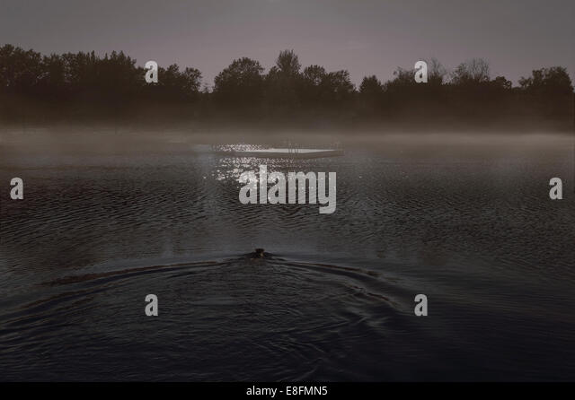 Canada, British Columbia, Vancouver, Silhouette of swimmer - Stock Image