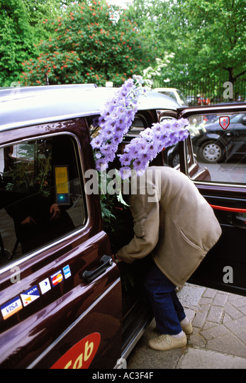 England, Chelsea Flower Show, Women leaving the show in a taxi with a delphinium - Stock-Bilder